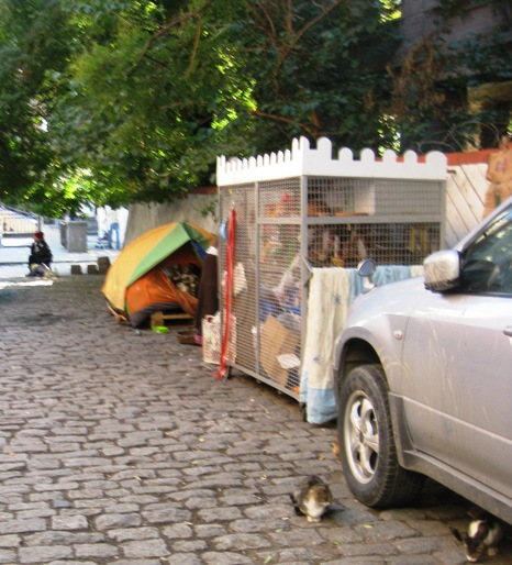 On the way through Old Tbilisi, one invariably passes the homeless lady who takes care of the strays.  She has clearly invested all her meager earnings into providing for these animals, as evidenced by the tent and the large cage for food and shelter!