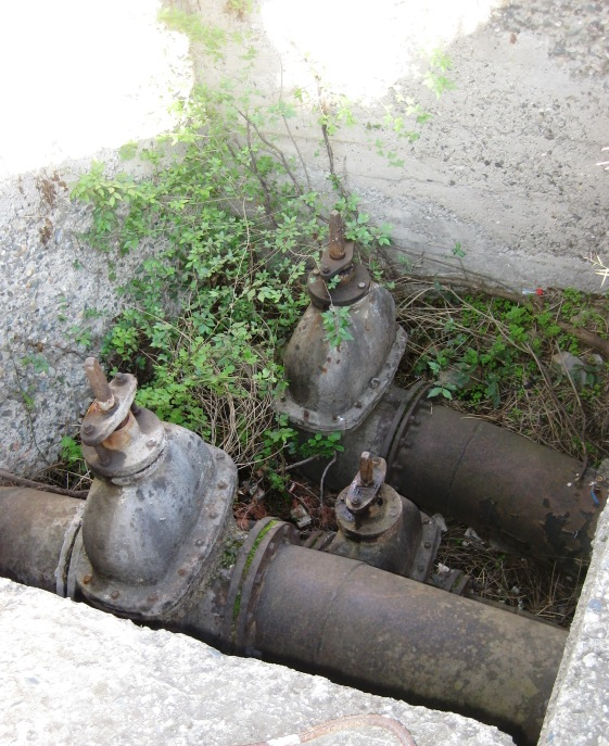 Like these old pipes peeking out of the ground!